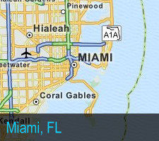 Lice Traffic Reports | Miami, Florida